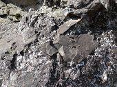 Metamorphic Rock With Quartz Veins