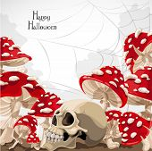 Happy Halloween banner with amanita mushroom frame and skull
