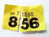 Torn ripped loosing raffle ticket