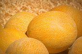 Ripe Melon Heap In Wood Sawdust
