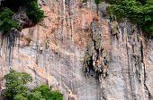 Cliff of phi phi island
