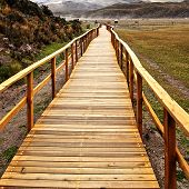 Wooden Bridge In The Cotopaxi National Park