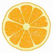 Classical Citrus