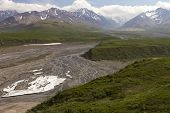 picture of denali national park  - scenic view of the Denali National Park  - JPG