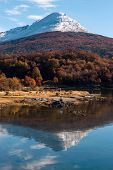 foto of darwin  - Autumn in Patagonia - JPG