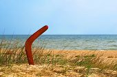 Brown Boomerang On Overgrown Sandy Beach.