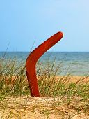 Boomerang On Overgrown Sandy Beach.