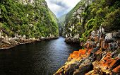 Tsitsikamma Nature Reserve Storms River