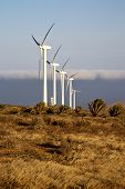 Africa Wind Turbines And The Sky In The Isle