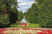 City Park In Balystok