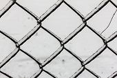 stock photo of ling  - Pattern of chain ling fence with chains covered with ice - JPG