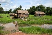 Cambodian coutryside