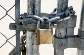 pic of chain link fence  - A Genuine Heavy Duty Pad Lock attaches a very strong carbon steel chain around a chain link fence to keep intruders out  - JPG