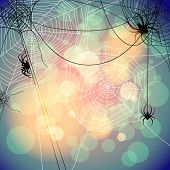 image of spiderwebs  - Festive background with spiders and web - JPG