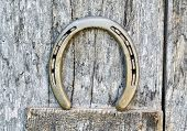 Horseshoe On A Wooden Door