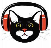 cat music headphones