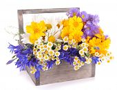 picture of crate  - Beautiful flowers in crate isolated on white - JPG