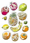 Set of fruits. Freehand drawing. Sweet tropical fruit