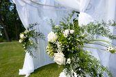 Wedding Tent In Park