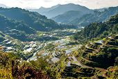 image of luzon  - the famous rice-terraces of Banaue Luzon Philippines