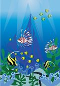 Marine life underwater  vector illustrations