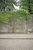Overgrown Ivy Brick Wall With Pavement And Cobblestone Road