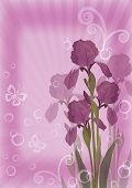 Flower background for greetings card