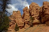 Extraordinary Landscape of Red Canyon