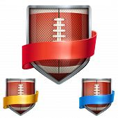 Set of Bright shield in the football ball inside with ribbons. Vector.
