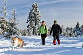 Couple Hiking With Dog In Winter Mountains