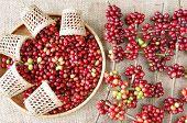 Red Fresh Coffee Bean