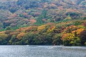 Beautiful Landscape Of Autumn Leaves Colors .