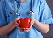 Doctor with stethoscope holding heart, isolated on grey background