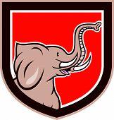 Elephant Head Side Shield Cartoon