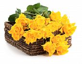 Yellow Roses Pn Basket