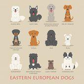 Set Of Eastern European Dogs