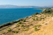 foto of golan-heights  - The east coast of the Sea of Galilee in Israel - JPG