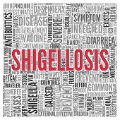 Close up Red SHIGELLOSIS Text at the Center of Word Tag Cloud on White Background.