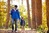 foto of children walking  - Father and son walking during the hiking activities in autumn forest at sunset - JPG
