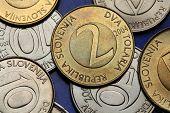 Coins of Slovenia. Slovenian two tolar coin.