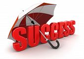 Success under Umbrella (clipping path included)