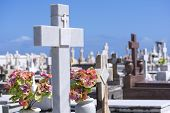 picture of san juan puerto rico  - Beautiful white marble cross and flowers among many other crosses and grave markers at cemetery in Old San Juan Puerto Rico - JPG