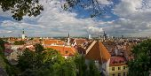 Panorama Of Old Tallinn In The Evening