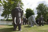Monument to elephants in Surin, Thailand.