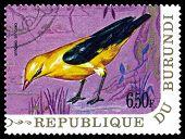 Vintage  Postage Stamp. Bird European Golden Oriole.