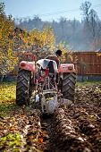 picture of plowing  - Senior farmer on an old red tractor plowing his garden in the backyard - JPG