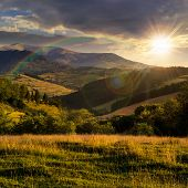Hillside Meadow With Forest In Mountain At Sunset