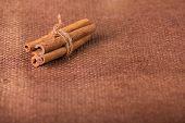 pic of cinnamon sticks  - Cinnamon - JPG