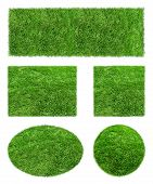 picture of grass area  - Backgrounds of green Grass Isolated on white background - JPG