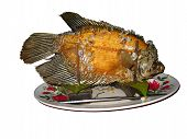 Deep Fried Fish, Isolated